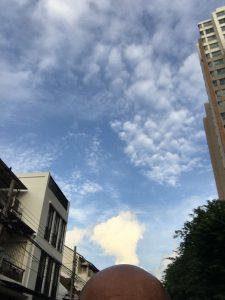 青空もつかの間、雨が降ってきました。