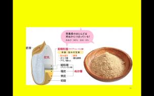 飲む玄米酵素